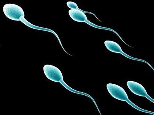 Η μεταθανάτια δωρεά σπέρματος θα πρέπει να επιτρέπεται, λένε βρετανοί ειδικοί