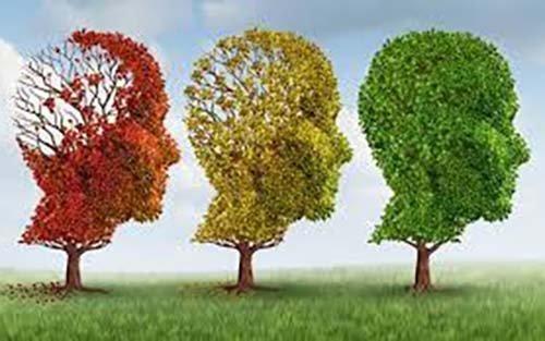 Σχεδιάστηκε αντίσωμα, που αναγνωρίζει στον εγκέφαλο τις τοξικές ουσίες που προκαλούν Αλτσχάιμερ
