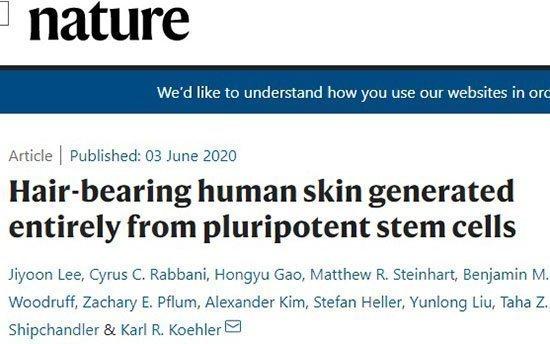 Δημιούργησαν ανθρώπινο δέρμα με τρίχες, φέρνοντας πιο κοντά τη θεραπεία της φαλάκρας